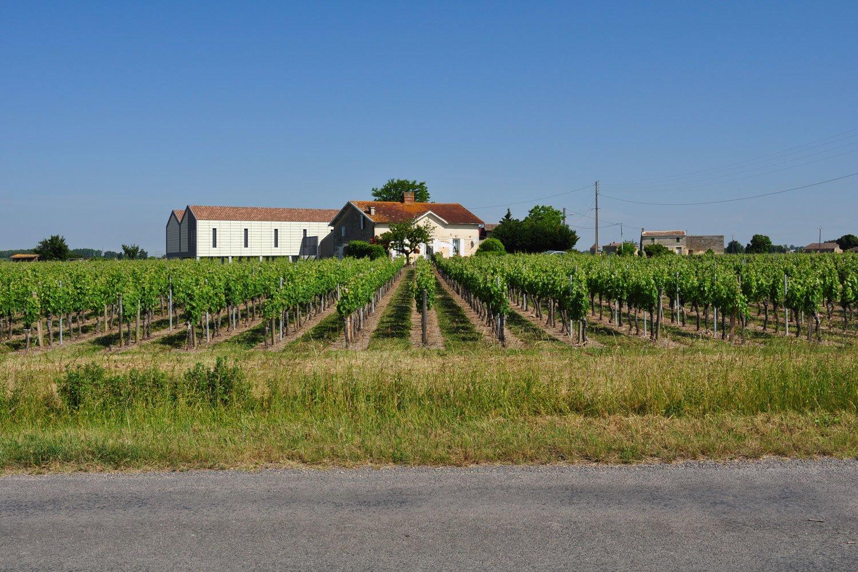 mlarchitectes-viticole-barraud-005
